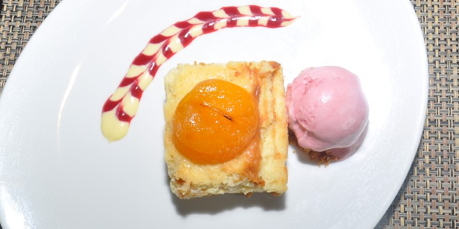 Baked Apricot Cheesecake and Raspberry Sorbet